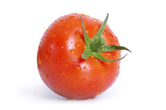 Tomato with water drops Stock Image