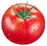 Tomato with water drops on it. Stock Photography