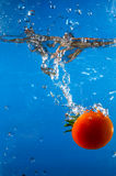 Tomato in the water Royalty Free Stock Images