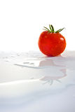 Tomato with water reflection. Fresh Tomato with water reflection with copy space Stock Photography