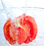 Tomato into water splash Royalty Free Stock Photo