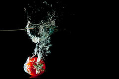 Tomato Water Splash. Tomato drop in a water tank creating a splash Royalty Free Stock Photography