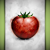 Tomato watercolor Stock Photo
