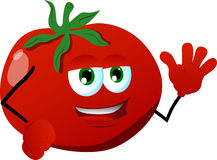 Tomato waving Stock Images
