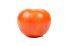 Tomato on a white background. Stock Photography