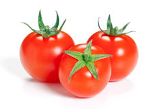 Tomato  on white background. Royalty Free Stock Photography