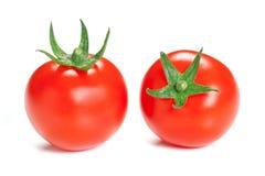 Tomato  on white background. Stock Photography