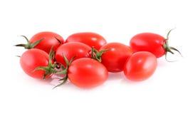 Tomato on a white background. Stock Image