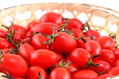 Tomato on a white background. Stock Images
