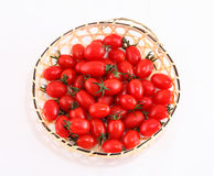 Tomato on a white background. Royalty Free Stock Images