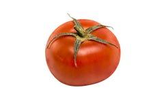 Tomato. On a white background Stock Photos