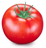Tomato on a white background. Stock Photos