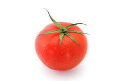 Tomato on white background Stock Image