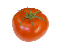Tomato on white background Royalty Free Stock Image