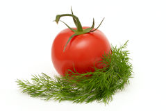 Tomato wiht dill Royalty Free Stock Photo