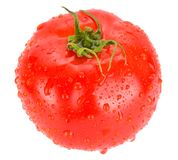 Tomato With Water Drops Isolated Stock Photography