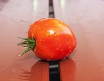Tomato on a wooden surface illustrating fresh food and harvest season royalty free stock image