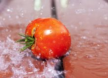 Tomato on a wooden surface illustrating fresh food and harvest season stock images