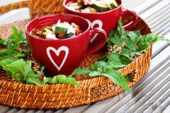 Tomato and zucchini soup Royalty Free Stock Photo