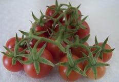 Tomatoe樱桃 免版税库存图片