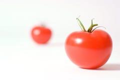 tomatoe Obrazy Royalty Free