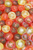 Tomatoe background Stock Photos