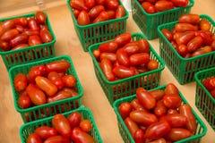 Tomatoe bunches Stock Photos
