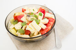 Tomatoe and cheese salad Stock Images