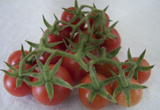 Tomatoe cherry Royalty Free Stock Image