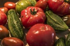 Tomatoe and cucumber wooden table bio organic backyard healthy outdoor produce germany macro closeup Royalty Free Stock Photos