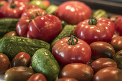 Tomatoe and cucumber wooden table bio organic backyard healthy outdoor produce germany macro closeup Royalty Free Stock Images
