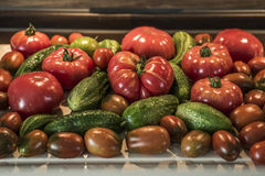 Tomatoe and cucumber wooden table bio organic backyard healthy outdoor produce germany macro closeup Stock Photography