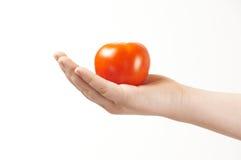 Tomatoe in de hand van kind - palm die omhoog onder ogen ziet Royalty-vrije Stock Foto's