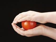 Tomatoe die tussen childshanden wordt geklemd Royalty-vrije Stock Foto's