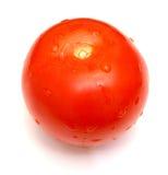 Tomatoe fresco Fotografia Stock