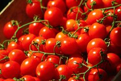 Tomatoe grapes on display Royalty Free Stock Photography