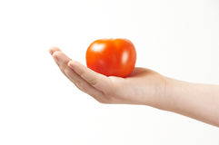 Tomatoe in the hand of child - palm facing up Royalty Free Stock Photos