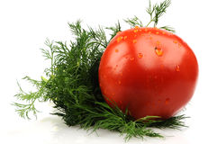 Tomatoe Royalty Free Stock Images
