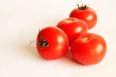 Tomatoe Royalty Free Stock Photo