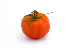 Tomatoe isolou-se no branco Foto de Stock