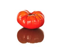 Tomatoe king Royalty Free Stock Image