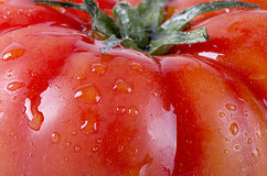 Tomatoe macro shot Royalty Free Stock Photos