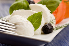 Tomatoe Mozzarella Salad Stock Photography