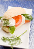 Tomatoe Mozzarella Sandwich Royalty Free Stock Images