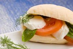Tomatoe Mozzarella Sandwich Stock Image