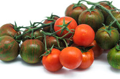 Tomatoe 5 Stock Photos