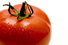 Tomatoe rouge Images libres de droits