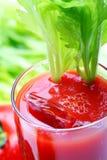 Tomatoe Saft oder Bloody Mary Lizenzfreies Stockbild
