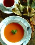 Tomatoe soppa i bunke fotografering för bildbyråer