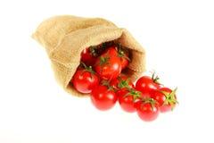 Tomatoe torby jutowa pełnia Obrazy Stock